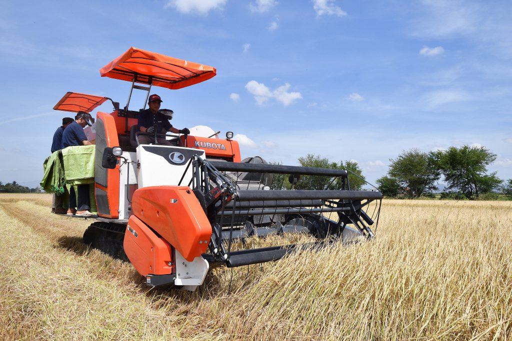 máy gặt DC93